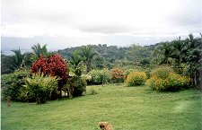 Finca Miramar, a farm and biological preserve, with a view of Gulfo Dulce on the horizon.