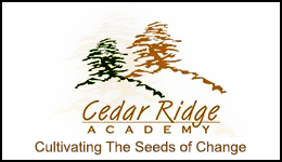 Cedar Ridge Academy Employment